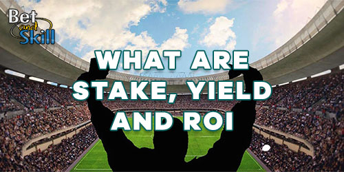 An In-Depth Look At Stake, Yield and ROI