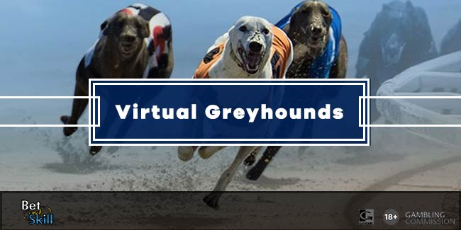 virtual-greyhounds