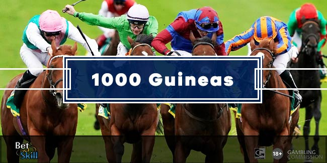 1000 guineas betting 2021 tips for selling federal election griffith betting line