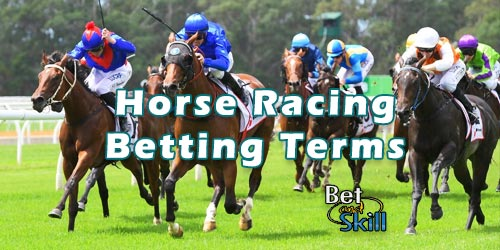 Horse Racing Betting Terms & Abbreviations