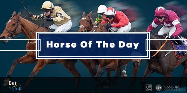 Horse Of The Day Betting Tip