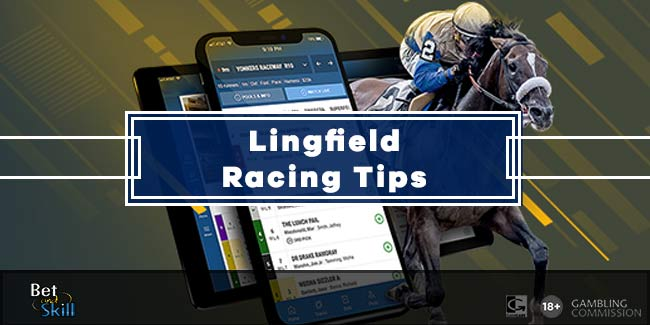 Today's Lingfield horse racing tips, predictions and free bets