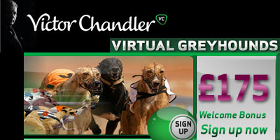 Bet or Play for free on Virtual Greyhounds with VCgames
